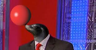 trained-seal-alsup-quotes